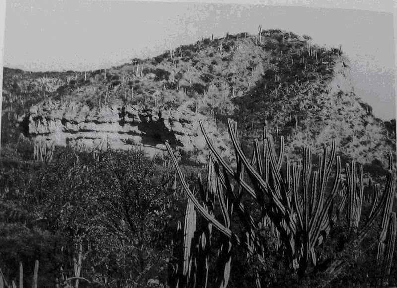 Теуакан
