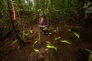 Аспирант Анна Коэн (Вашингтонский университет) документирует находки. Фото: DAVE YODER, NATIONAL GEOGRAPHIC