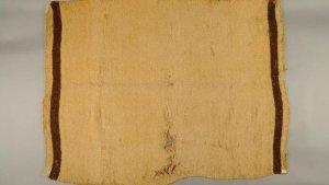 Одеяло с шерстью вымершей собаки салишей. Фото: Музей естественной истории и культуры имени Бёрке