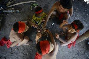 Индейцы яномами за трапезой. Венесуэла, 2012 г. Фото: LEO RAMIREZ / AFP