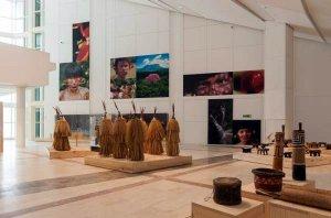 """В Сантьяго-де-Компостела (Испания) до 12 января 2014 г. открыта выставка """"Ориноко. Путешествие к затерянному миру"""". Фото - Cidade da Cultura"""