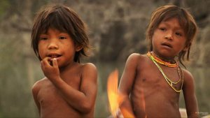 Лучшим фильмом кинофестиваля «Мир знаний» стала лента «Грамматика счастья» об индейцах пираха