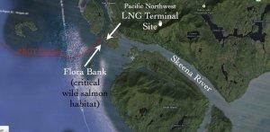 Индейцы и экологи через суд хотят закрыть СПГ-проект Petronas в Британской Колумбии