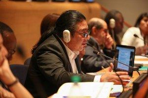 Альваро Поп Aк, председатель Постоянного форума Организации Объединенных Наций по вопросам коренных народов. Архивное фото: iisd.ca