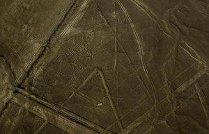 Средств на сохранение и защиту геоглифов Наска не хватает. Фото: AP / Harold Heckle