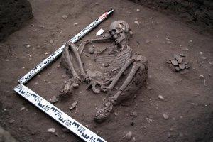 Древнюю керамику и останки из Эквадора будут изучать учёные ДВФУ и Стокгольмского университета. Фото: ДВФУ