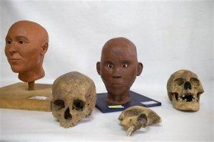 Черепа испанца (слева), ребенка (в центре) и негра (справа). Также представлена реконструкция по черепу образов испанца и негра. Фото: Ребекка Блэквелл / AP / 08.10.2015.