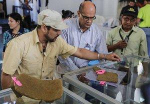 15 тысяч артефактов найдено лишь в самом начале строительства никарагуанского канала. Фото - INTI OCON AFP/GETTY IMAGES