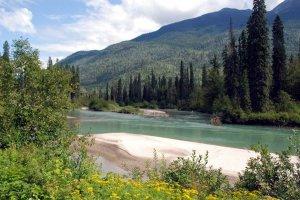 Река Адамс (Канада). Фото - www.shuswappassion.ca