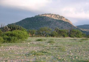 Крепость Митла на вершине горы. Фото: L. Nicholas