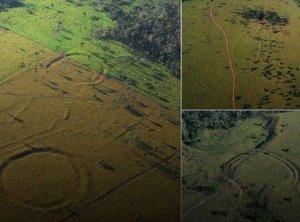 Проведено исследование влияния на окружающую среду строителей амазонских геоглифов