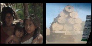 Индейское племя ауа (awa), или гуажа (guaja). Восток Амазонии