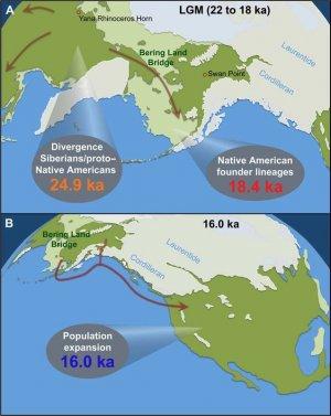 Масштабное исследование мтДНК рассказало о заселении Америки и резком сокращении населения после европейской колонизации