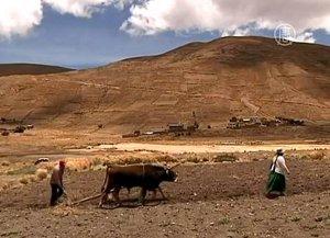 Боливийские фермеры уже ощущают изменение климата