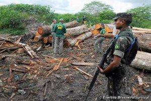 Бразильские военные встали на защиту индейцев ауа