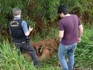 Ещё один лидер бразильских гуарани найдена мёртвой на обочине шоссе. Фото - Освальдо Дуарте / Dourados News