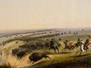 """Картина Альфреда Джейкоба Миллера """"Прыжок бизона"""", 1859-1860 (Walthers Museum)"""