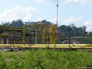 Науа из Перу сказали нет газовому консорциуму. Фото - A. Goldstein/Survival