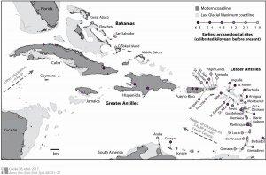 Исследование: в Вест-Индии человек виноват в исчезновении 60% видов млекопитающих