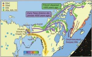 Генетики: палеоэскимосы прибыли в одной миграционной волне и исчезли 700 лет назад