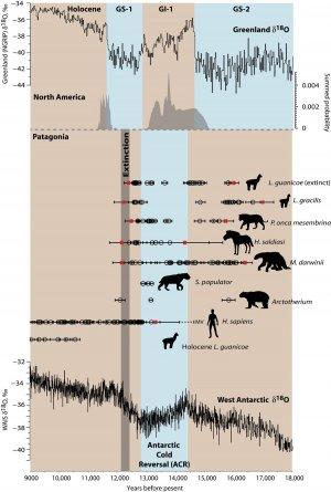 Исследование: на вымирание мегафауны повлияло наложение двух факторов – человеческого и климатического