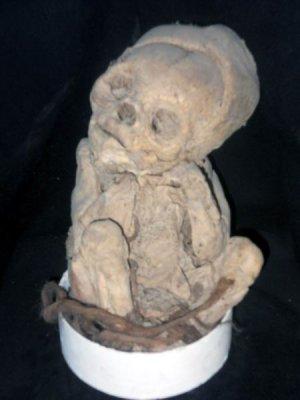 18-сантиметровая мумия Ичикуна (Ichikuna – «Маленький человек» на языке кечуа)