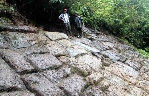 В национальном парке Льянханатес эквадорской части Амазонии международная группа исследователей заявила, что обнаружила нечто пока ещё непонятное