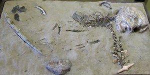 Реконструкция погребения мальчика на стоянке Мальта. Эрмитаж, Санкт-Петербург. Источник: Nature.com