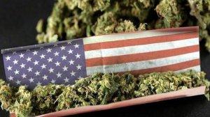 Индейцам США теперь можно выращивать и продавать марихуану, но не везде