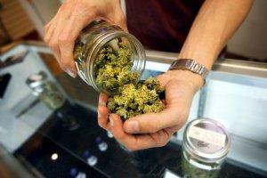 Готовится проведение национальной конференции индейцев США, посвященной легализации марихуаны