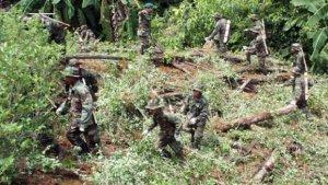 Боливийцы нападают на уничтожающих нелегальные посевы коки полицейских и военных