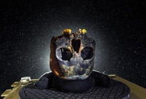 Исследование: кости рассказали о трудной судьбе девочки, жившей на Юкатане 12-13 тыс.лет назад. Архивное фото: Paul Nicklen/NGC