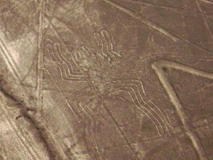 Нелегальная шахта обнаружена на территории памятника Линии Наска