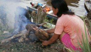 Индейцы матсес употребляют в пищу жаренных ленивцев. Фото: Alexandra Obregon-Tito, Raul Tito