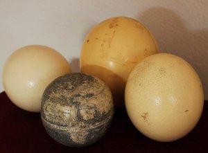 Возможно найден самый старый глобус с изображением Нового Света. Фото - Washington Map Society.