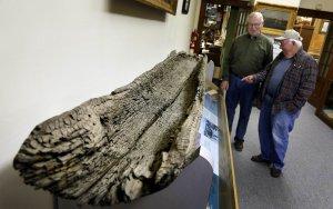 Радиоуглеродный анализ каноэ из Миннесоты дал ей возраст в 1000 лет. Фото - Brian Peterson / Star Tribune / startribune.com