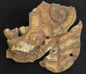 Сапотеки носили украшения из раскрашенных человеческих челюстей. Фото: Erica Ausel (Ph.D. Indiana University)