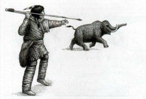 Исследование: мегафауна Америки исчезала соответственно расселению палеоиндейцев