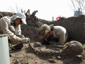 Российские археологи нашли в Эквадоре два погребения и зафиксировали переход от докерамической культуры к керамической. На фотографии Андрей Табарев с коллегой. Фото: НГУ