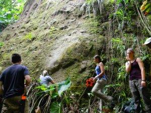 Профессор и студенты за работой. Жители карибского острова Монсеррат обнаружили древние петроглифы. Фото: Montserrat National Trust