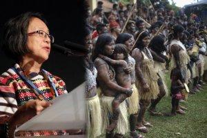 Специальный докладчик ООН по вопросу о правах коренных народов Виктория Таули-Корпус совершит десятидневный визит в Бразилию