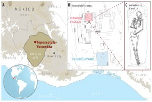 Учёным удалось выявить сальмонеллу кишечную (Salmonella enterica) у захороненных на кладбище Тепесколула-Йукундаа (Оахака, Мексика) жертв эпидемии раннего периода контакта с европейцами. Илл. https://doi.org/10.1101/106740