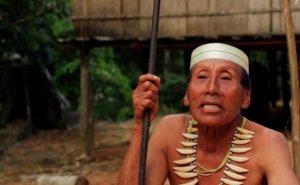 Индеец матсес Саломон Дуну обращается к миру и руководству нефтяной компании. Архивный кадр видео: Survival International / survivalinternational.org