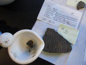 Приготовленный для анализа осколок керамики, на котором и были найдены следы салициловой кислоты. Фото - Дениз Реган