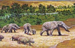 Палеоиндейцы охотились на выживших предков слонов. Рисунок - Gomphothere proboscidean, Sam Matternes, 1964