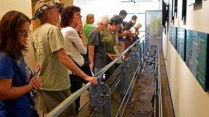 В выставочном центре природного и культурного заповедника Уиден-Айленд в графстве Пинеллас штата Флорида посетители могут теперь увидеть древнее каноэ
