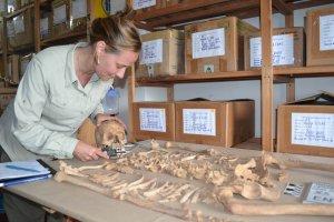 Марла Тойне за работой в лаборатории в Тукуме. Архивное фото: anthropology.cos.ucf.edu