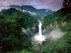 Индейцы Эквадора предлагают провести референдум о возможности нефтедобычи в Национальном парке Ясуни