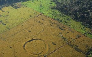 450 геоглифов обнаружили при помощи дронов в Бразилии. Фото: Salman Kahn and José Iriarte