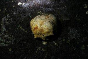 Сплющенный череп (вероятно женский). В сеноте Сак-Уаюм. Фото - Bradley Russell, National Geographic